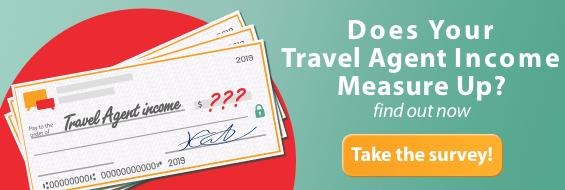 Travel Agent Income Survey