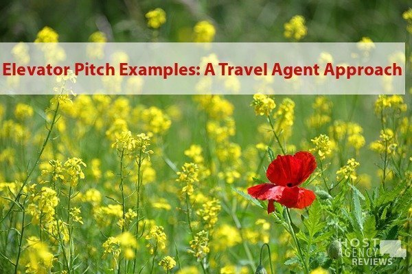 Elevator Pitch Examples: A Travel Agent Approach