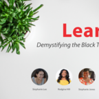 Learn. Demystifying the Black Travel Ecosystem