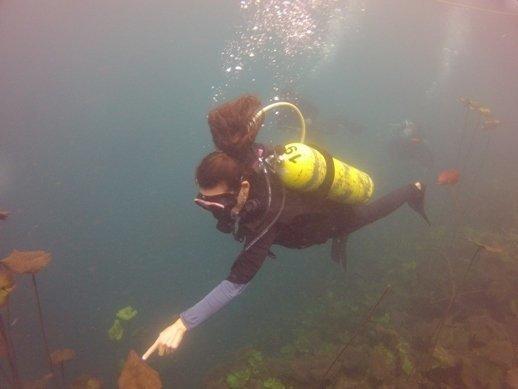 ATMEX scuba diving in laguna de la media luna