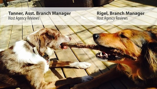 Rigel, Branch Manager. Tanner, Assistant Branch Manager